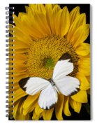 Delightful White Butterfly Spiral Notebook