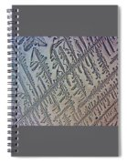 Deliniated  Spiral Notebook