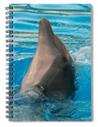 Delphin 2 Spiral Notebook