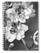 Delphinium Black And White Spiral Notebook