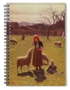 Deluded Hopes Spiral Notebook