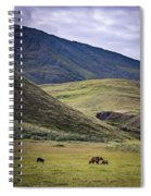 Denali Grizzly Family Spiral Notebook