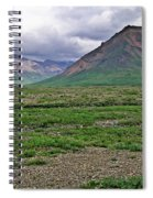 Denali National Park Landscape 3 Spiral Notebook