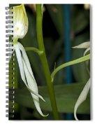 Dendrobium Orchid Spiral Notebook