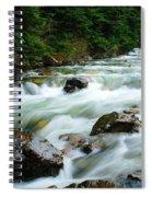 Denny Creek  Spiral Notebook
