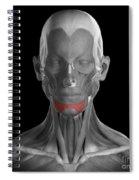 Depressor Labii Inferioris Spiral Notebook