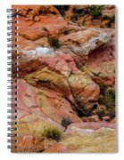 Depth Of The Canyon Spiral Notebook