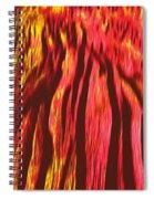 Depths Of Mordor Spiral Notebook
