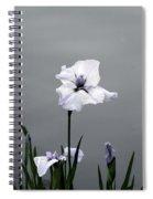 Desaturated Japanese Water Iris 2707 H_5 Spiral Notebook