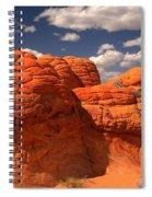 Desert Brain Rocks Spiral Notebook