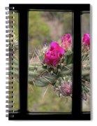 Desert Cactus Triptych Spiral Notebook
