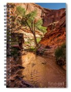 Desert Canyon Paradise - Coyote Gulch - Utah Spiral Notebook