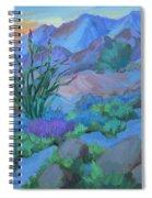 Desert Dawn Spiral Notebook