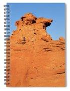 Desert Dog Spiral Notebook
