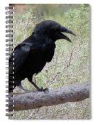 Desert Elements 10 Spiral Notebook