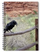 Desert Elements 11 Spiral Notebook