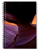 Desert Eye Spiral Notebook