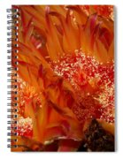Desert Fire Spiral Notebook