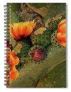 Desert Flame Spiral Notebook