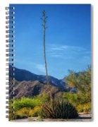 Desert Flowers In The Anza-borrego Desert State Park Spiral Notebook
