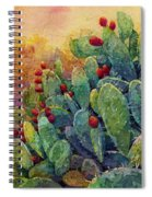 Desert Gems 2 Spiral Notebook