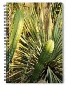 Desert House Magic Hour Spiral Notebook