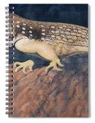 Desert Iguana Mural Spiral Notebook