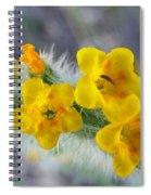 Desert In Bloom Spiral Notebook