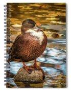 Desert Island Spiral Notebook