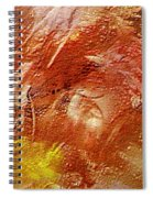 Desert Land Spiral Notebook