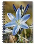 Desert Lily Spiral Notebook