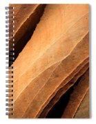 Desert Lines Spiral Notebook