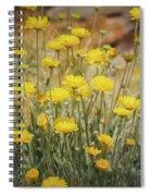Desert Marigold Bouquet  Spiral Notebook