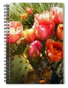 Desert Perfection Spiral Notebook