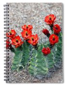 Desert Queen Spiral Notebook