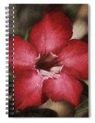 Desert Rose In Daytona Spiral Notebook