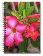 Desert Rose Or Chuanchom Dthb2108 Spiral Notebook