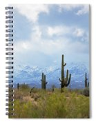 Desert Snow Spiral Notebook