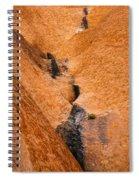 Desert Stain Spiral Notebook