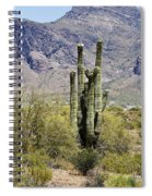Desert Strength Spiral Notebook