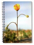 Desert Sun Flower Spiral Notebook