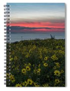 Desert Sunflowers Coastal Sunset Spiral Notebook