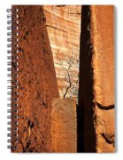 Desert Vise Spiral Notebook