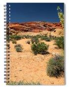 Desert Yucca In Bloom Valley Of Fire Spiral Notebook
