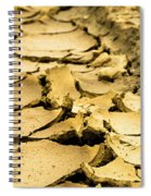 Designs In The Mud Spiral Notebook