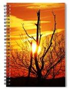 Desire Spiral Notebook