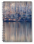 Desolate Splendor Spiral Notebook