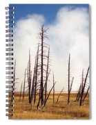 Desolation Spiral Notebook