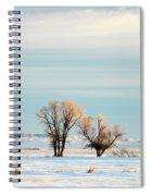 Desperate Trees Spiral Notebook