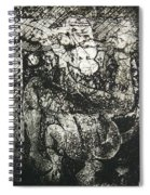 Destroy Plate Spiral Notebook